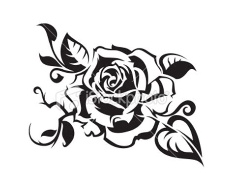 About rose flower essay